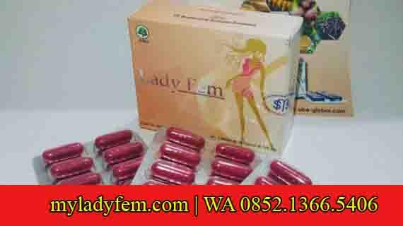 Permalink to Jual Ladyfem Jogja, Klaten WA 0852.1366.5406 | Solusi Herbal Kewanitaan Masa Kini